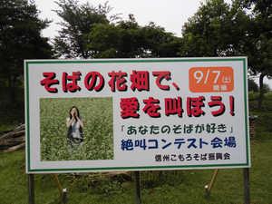 絶叫そば2 (2)-1