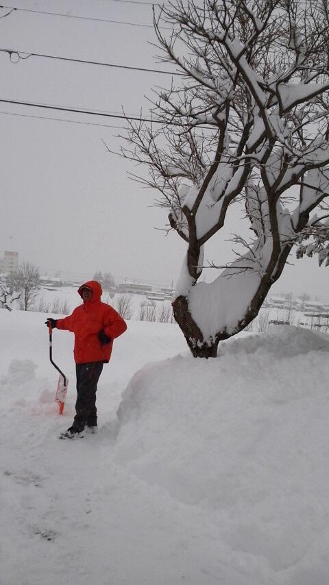 福井りんご園 雪かき 2014.2.15