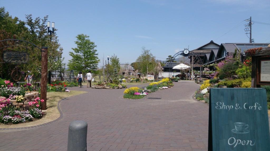 5月停車場ガーデン (2)
