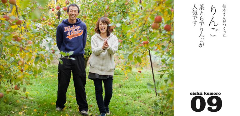 柏木果樹園 りんご