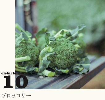 10_mizuguchi_04